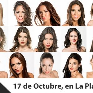 Miss Sur 2014